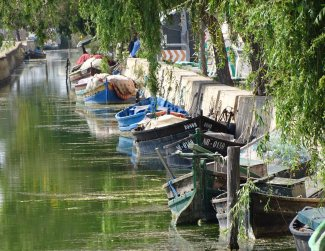 Paddy boats along the canal