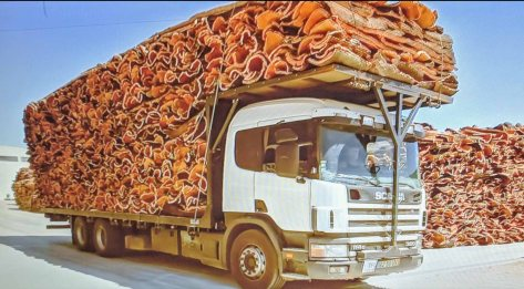 A truck loaded with the bark of the cork tree