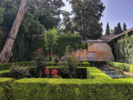 Court of the Sultana's Cypress Tree