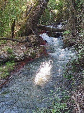 Río Monachil River