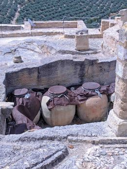 Wine Jars found beneath the Bodega