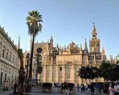 A side view of the Catedral de Sevilla from the Plaza del Triunfo
