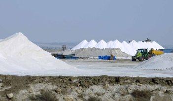 Harvesting Sea Salt