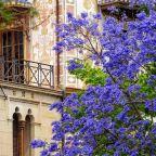 Gandía, Spain
